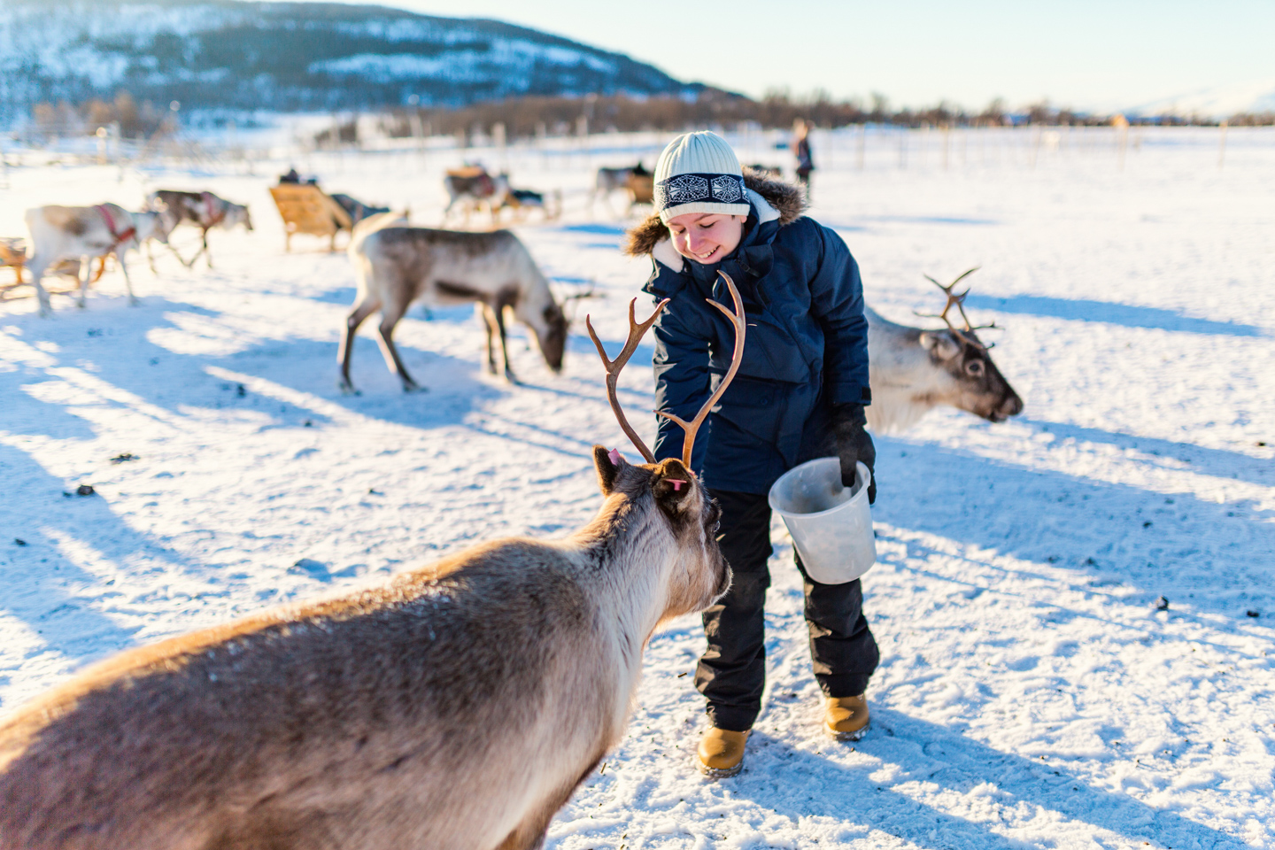 The Most Festive Places In Europe Lapland Dreamstime L 113955000